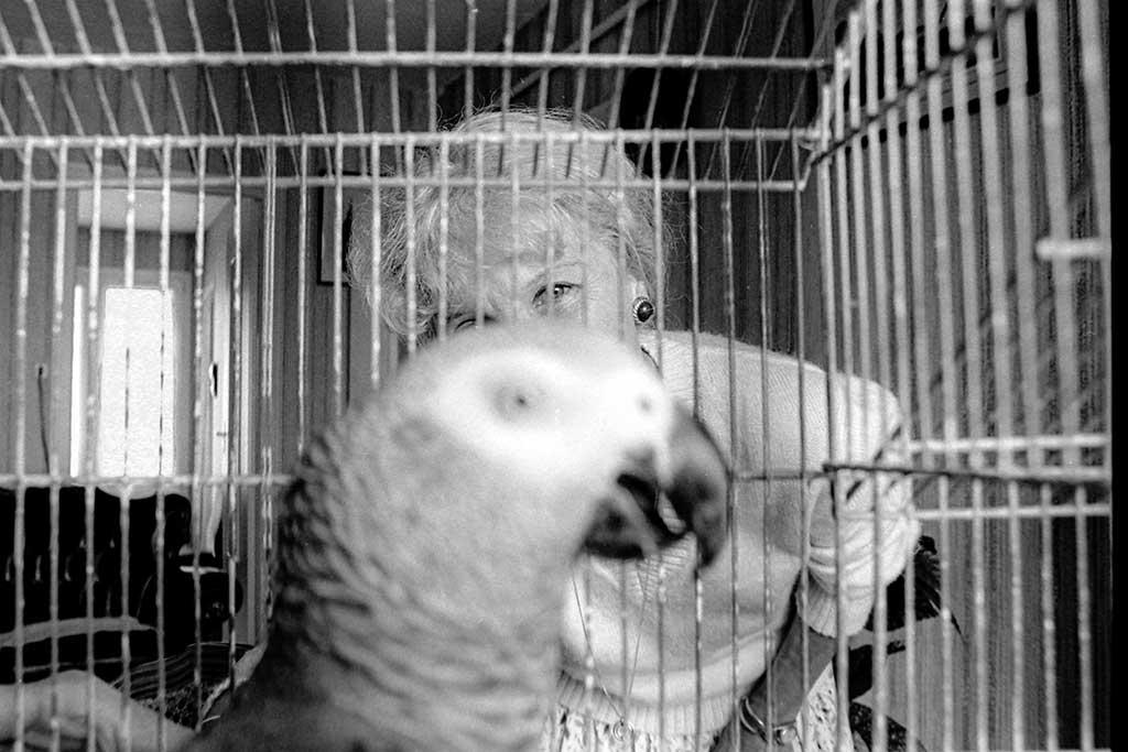 femme dans cage perroquet devant
